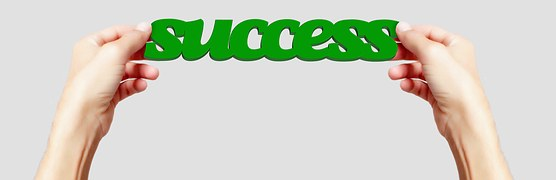 success image for Do You Want to Succeed Online – Why Don't You Use What You Have in Common with Your Prospects to Make Them Like You and Ensure That?