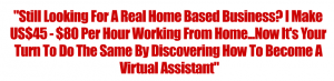 Image of a call to be a virtual assistant
