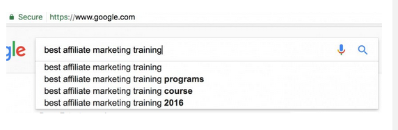 Best affiliate marketing training typed into the Google window to show predictive results