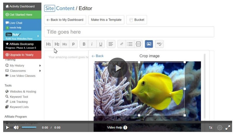 Using the siteContent Image Editor video image as How to Design Your Web Content to Make It Look Beautiful
