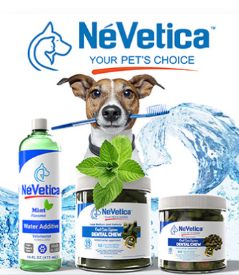 Nevetica your pet's choice showing a dog clutching a toothbrush in its teeth before a line of products